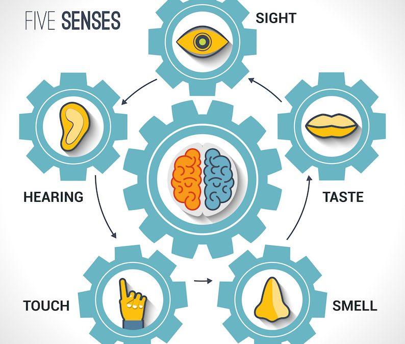 Self-Care Through Our 5 Senses